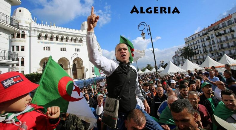 Algerian Political System