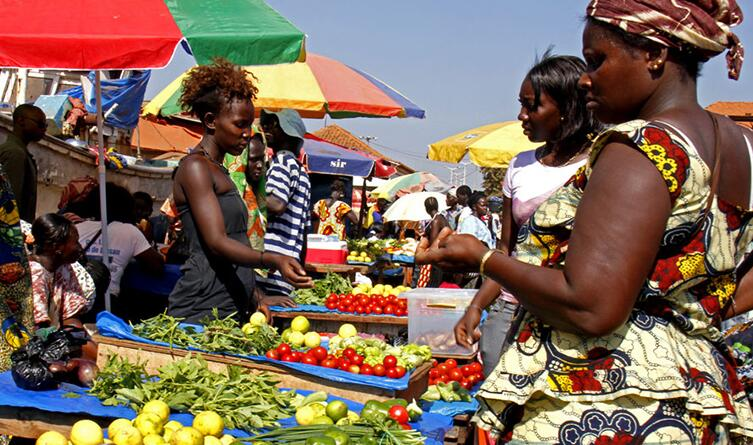 Economy and Business in Guinea-Bissau