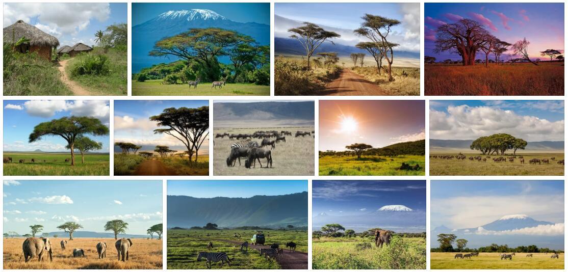 Republic of Tanzania