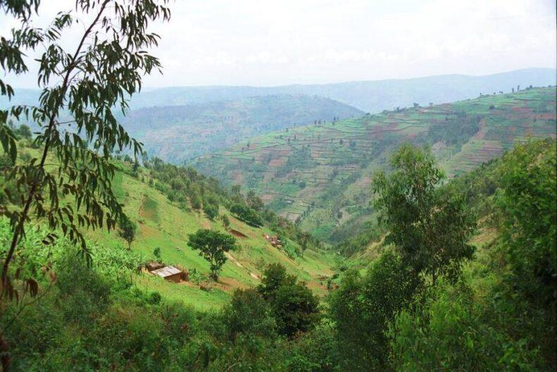 Rwanda M23