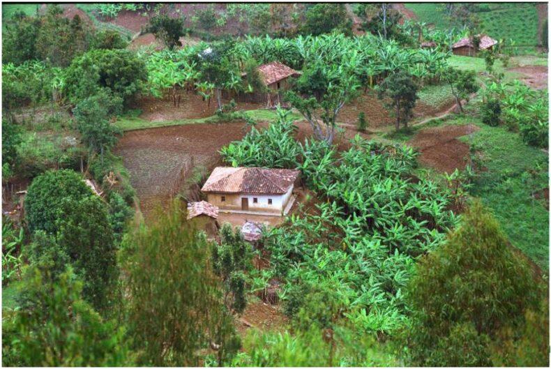 Rwanda Settlement structures